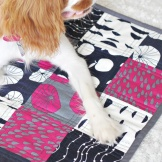 NOTHS Pet Quilt